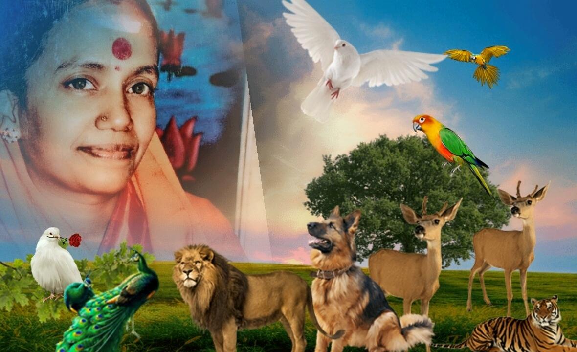 Divine Mother Gayathri Amma Gallery - divine_mother_gayathri_0068.jpg